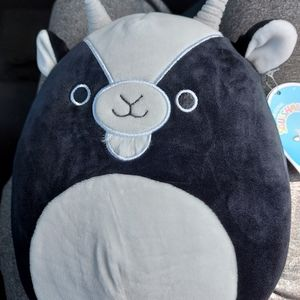 Gregory Squishmallow